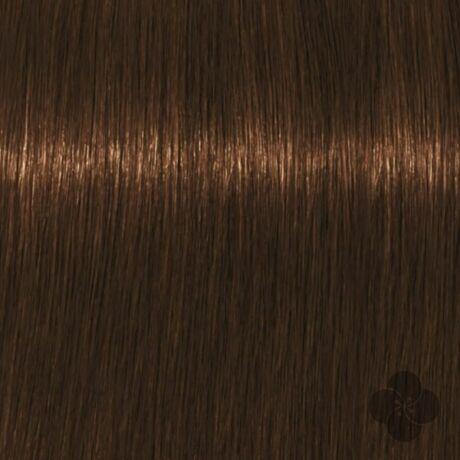 Igora Royal Absolutes Age Blend 7-460 krémhajfesték, 60ml