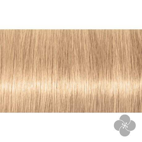 INDOLA PCC Blond Expert - szőke árnyalatok tartós hajfesték 1000.18, 60ml