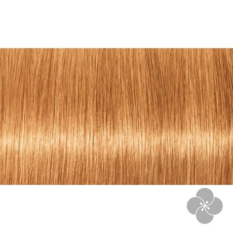 INDOLA PCC Blond Expert - pasztell árnyalatok tartós hajfesték P.14, 60ml