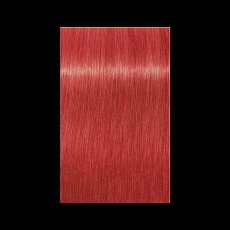 Igora Royal 0-88 krémhajfesték, 60ml