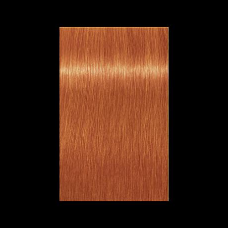 Igora Royal 0-77 krémhajfesték, 60ml