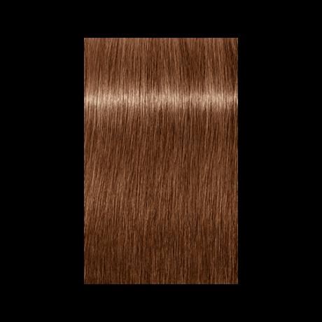 Igora Royal Absolutes Age Blend 7-560 krémhajfesték, 60ml