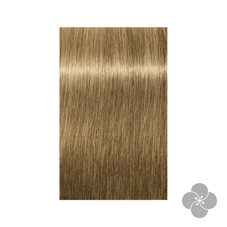 Igora Royal Absolutes 8-50 krémhajfesték, 60ml