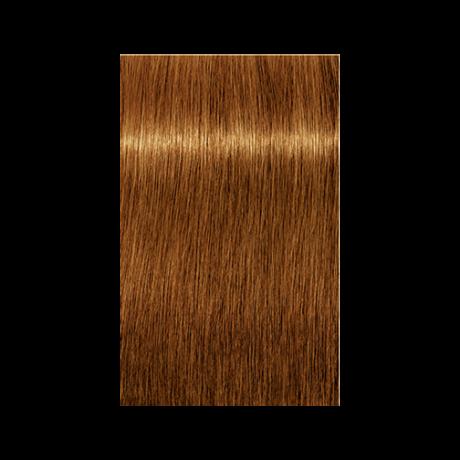 Igora Royal Absolutes 7-70 krémhajfesték, 60ml