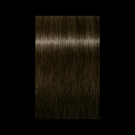 Igora Royal 6-0 krémhajfesték, 60ml