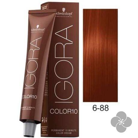 IGORA Color10 6-88 krémhajfesték 10 perc hatóidővel, 60 ml
